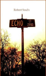 ECHO CT